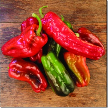 Pepper Large Sweet Antigua