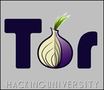 Anonymous Browsing Online with TOR