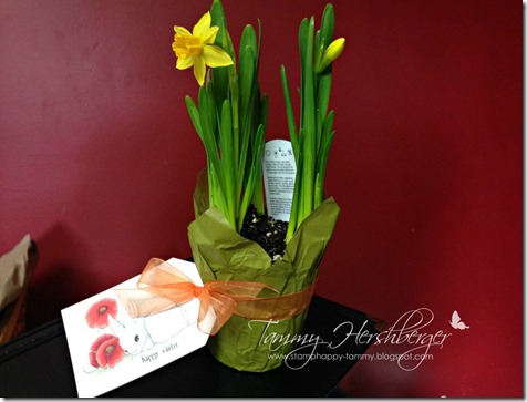 Easter Bunny with Daffodils by Tammy Hershberger