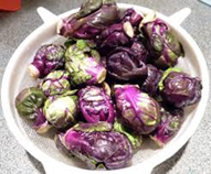 Purple Brussels