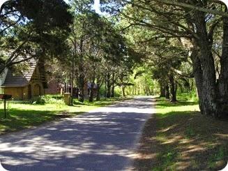 Los frondosos bosques componen un sendero ideal para actividades como la cabalgata o el ciclismo
