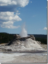 110827 NP Yellowstone (29)