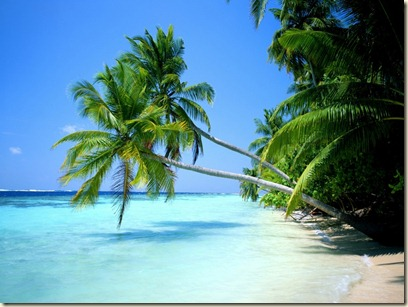 playa del carmen-