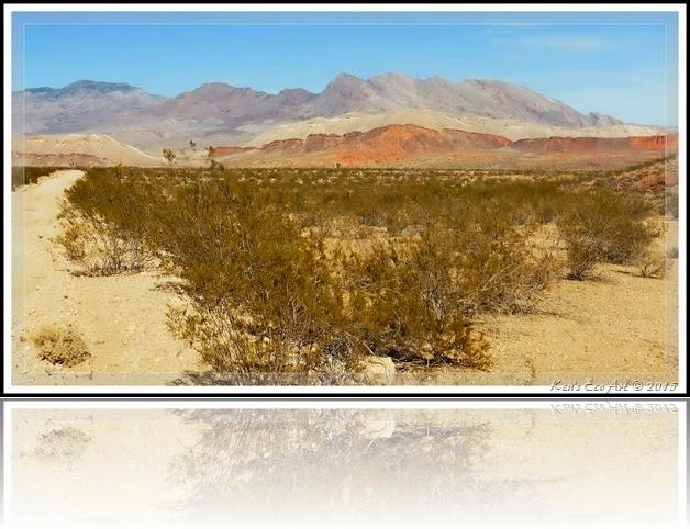 EFP-Gold Butte Landscape 03
