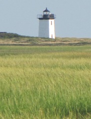 Provincetown Lighthouse taken across the marsh1