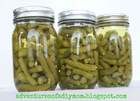 Canning Green Beans (13)