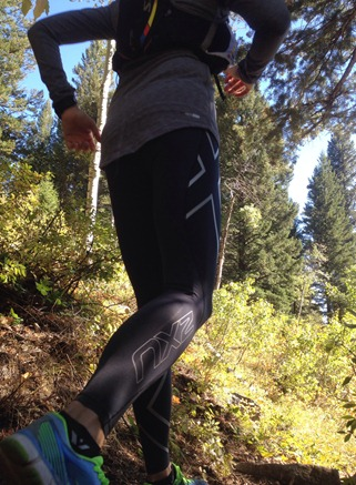 2XU Compression pants for long runs