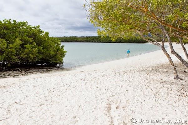 viajar-islas-galapagos-actividades-gratuitas-gratis-baratas-santa-cruz-unaideaunviaje-10.jpg