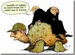 tortuga-kQAG