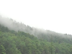 8.8.11 VT mist rising off the mts