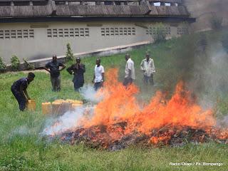 Incinération des drogues par la Police nationale congolaise ce 15 mars 2011 à Kinshasa.