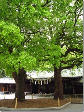 Japan May 2011 181