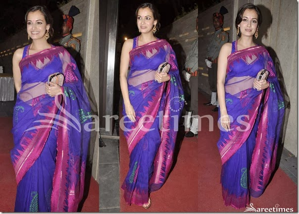Dia_Mirza_Blue_Net_Saree
