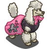 skirt poodle