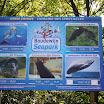 Boudewijn Seapark-141.JPG