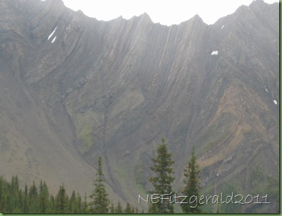 Isoclinal_folding_P_Lougheed_Prov_Park_AB_CA