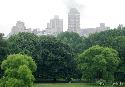 DSC_0237 NYC skyline-kab