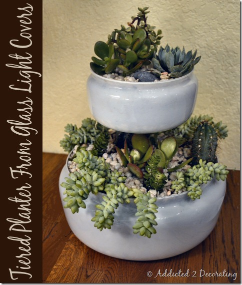 DIY Project, indoor succulent garden planter, turn outdated glass light covers into a two-tiered indoor tabletop planter