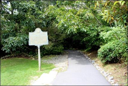 trail up to Brasstown Bald