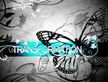 transform4