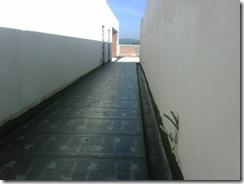 IMG00683-20111007-1001
