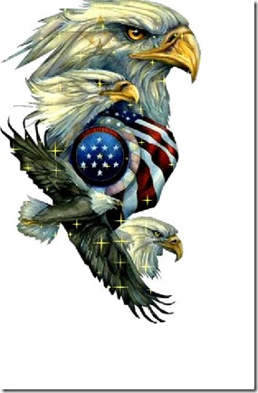 Grey-Haired Brigade Bald Eagle