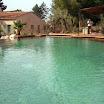 piscine bois modern pool 31.jpg