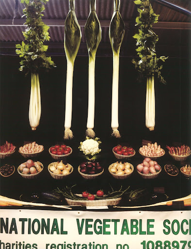 Look at how deliciously fresh these vegetables look at the Royal Bath & West Show, an agricultural show held in Shepton Mallet.