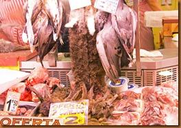 seville market bunnies