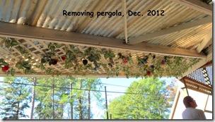 Pegola-removal-Dec-2012.