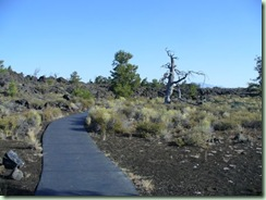 Day17Craters trail