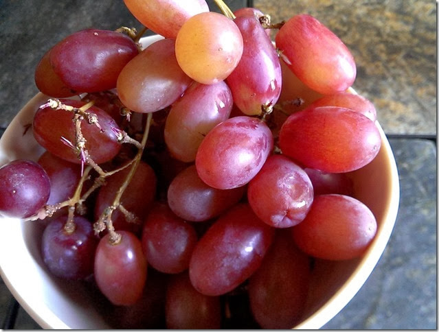 grapes-public-domain-pictures-1 (2249)
