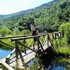 Salencar_de_Barruera1_25_1024.JPG