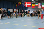 20130510-Bullmastiff-Worldcup-0639.jpg