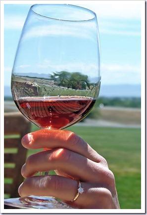segurar-taa-vinhos-vinhoedelicias