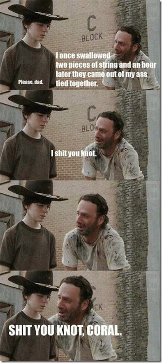 walking-dead-dad-jokes-008