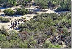 Wild Burro Hike Jan 21 063