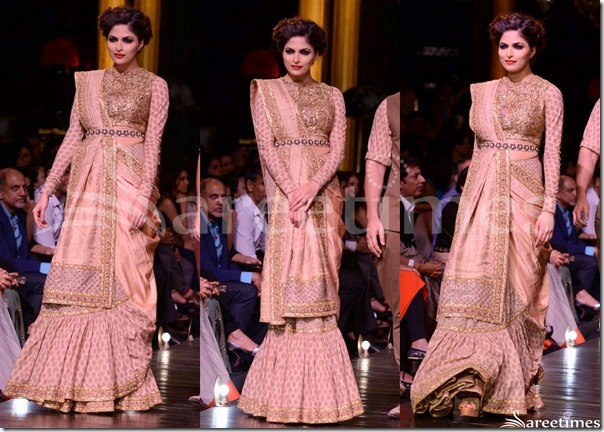 Sabyasachi_Full_Sleeves_Saree_Blouse
