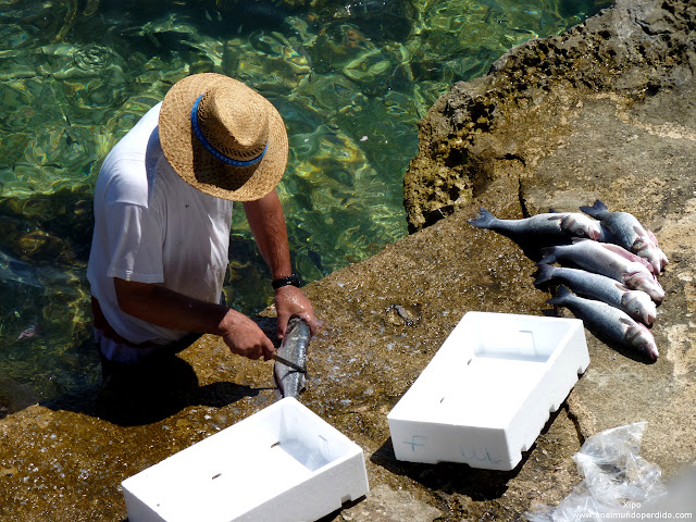 pescador-limpiando-pescado-fresco-en-korcula.JPG