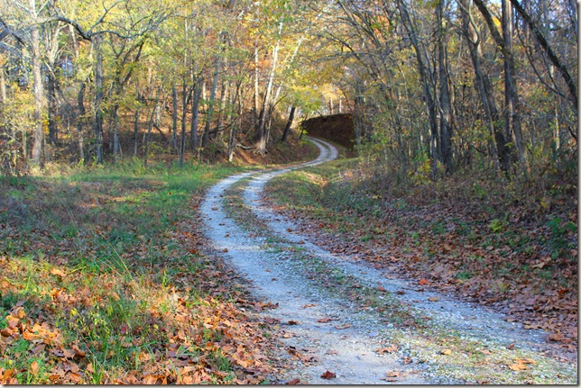 Gravel road leading to Muddy Bottom Wild Life Preserve