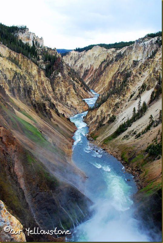 Grand Canyon of the Yellowstone 2011