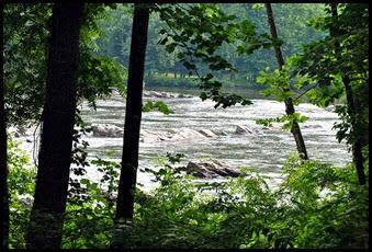 11a - River View