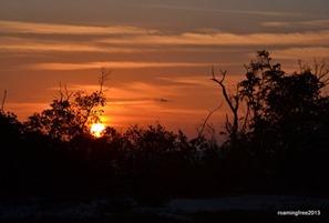 Feb 28_Sunset