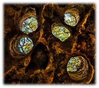 Holes, Matt Anderson