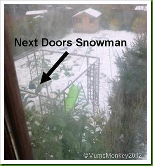 next door's snowman