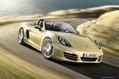 2013-Porsche-Boxster-51