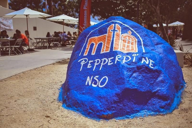 pepperdine nso-8