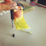 ボールペンにかみつくきなこちゃん