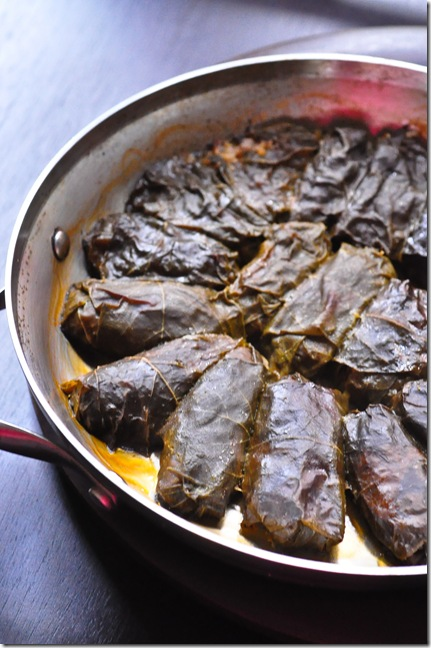 stuffed grape leaves after baking
