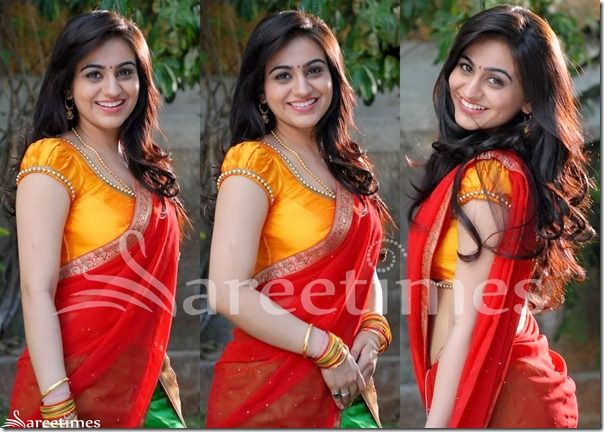 Aksha_Ruffled_Sleeves_Saree_Blouse